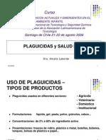 Plaguicidas y Salud Infantil 2006