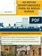 As Novas Oportunidades das Areas Rurais