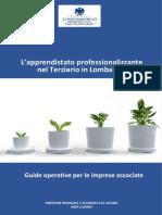 Guida Apprendistato Professionalizzante 2017 Def