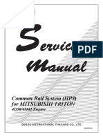 Common rail Triton.pdf