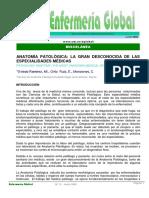16161-Texto del artículo-77111-1-10-20080511