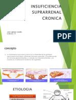 Insuficiencia Suprarenal Cronica Jordy Merino Cedeño g19
