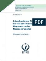 Fascículo I-Introduccion al Sisteme DD.HH de las Naciones Unidas