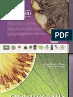 cromatografia-suelos didactico restrepo-pinheiro.pdf