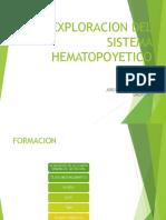 EXPLORACION FISICA HEMATOPOYETICO