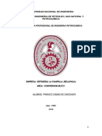 Informe de Practicas Pre CAMACHO