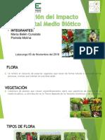 Cunalata Ma.belen _ Molina Pamela (Medio Biótico)(1)(1)