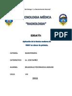 1er ENSAYO_delgadillo.docx