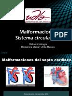 Malformaciones Sistema Circulatorio.pptx
