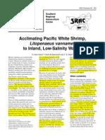 Acclimating White Shrimpto Low Salinity