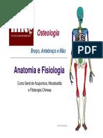 Slides anatomofisiologia