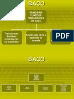 SÍNDROMAS DO BP-E