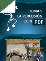 Tema 5 Percusion Corporal