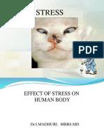 stress 1.ppt