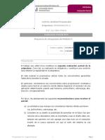 ProgII_PIM2.docx