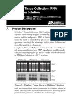 RNAlater RNA Stabilization Solution Qiagen