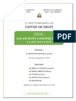 LA SNC.docx