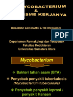 Anti TB KBK FK USU