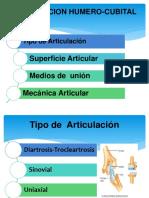 ARTICULACION HUMERO-CUBITAL.pptx