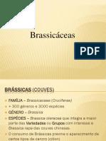 Brassicas.pdf