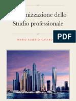 L'Organizzazione Dello Studio Professionale