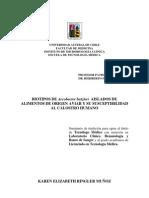 UNIVERSIDAD AUSTRAL DE CHILE doc portada doc revisado