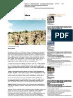 As invenções de Fortaleza | JORNAL O TEMPO.pdf