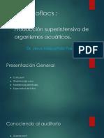 1 Curso Bioflocs Español.1 (1)