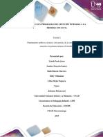 Paso 3 Formular Documento Sobre Fundamentos Políticos, Técnicos y de Gestión de AIPI
