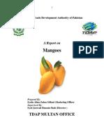 TDAP Multan