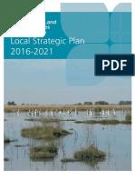 Riverina LLS Strategic Plan