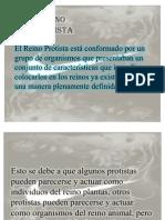 protistas-diapo