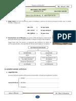 ASPECTO CULTURAL Y ARTÍSTICO DEL TAHUANTINSUYO