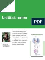 AV_29_Urolitiasis_canina.pdf