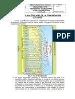 Unidad 7 Señalización Celular 2014