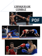 Techniques de Combat