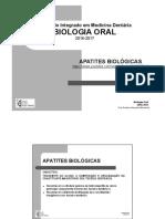 2 Apresentação ProfAlexandraBernardo.pdf