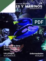 Corales y marinos Mayo 2018