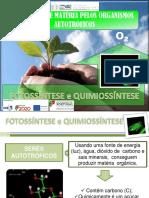 Obtenção de matéria pelos seres autotróficos- fotossintese e quimiossintese.pptx