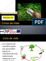 ppt18-ciclosdevida-