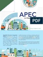 APEC - In Charts 2017