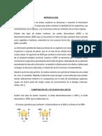 acidos nucleotidos