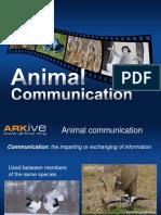 Animal Communication - 14-16 - Classroom Presentation