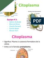 citoplasma1-121024150544-phpapp01