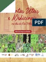 Plantas úteis e medicinais na obra de Frei Vellozo