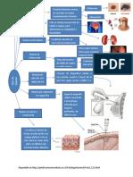 Practica 1 Biopsias-1