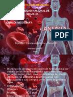 Anemia Medicinai 140818233029 Phpapp02