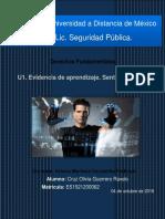 SDFS_U1_EA_CRGR