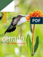 Retratos - Cerrado - Junho 2018