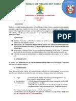 Regional Sur 2019 Oficial II